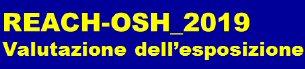 Logo REACH 2019