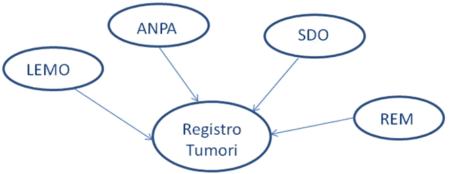 Immagine con cerchi che contengono i nomi delle fonti informatizzate che generano i nuovi casi da registrare: LEMO, ANPA, SDO e REM
