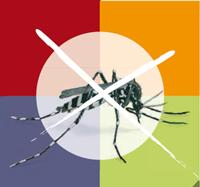 Contro la zanzara tigre facciamoci in 4