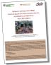 Immagine che linka alla scheda sui fattori comportamentali nel Distretto di Mirandola: dati 2010-2015 del sistema di sorveglianza PASSI (335.93 KB)