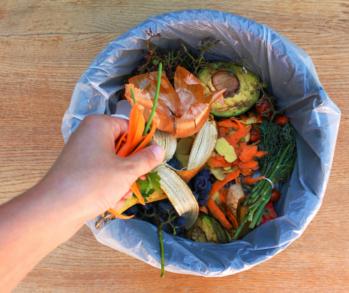 Fotografia di un cestino ripieno di rifiuto biologica con una mano che sta buttando degli avanzi di carota.