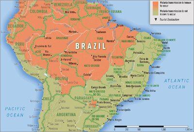 zone endemiche per malaria in Brasile